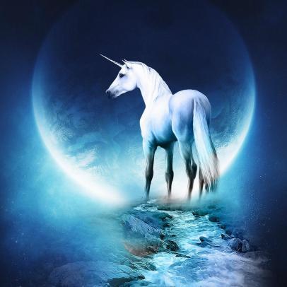 OMFG TRUMP - Unicorn.jpg