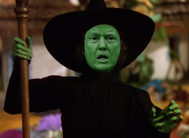 OMFG TRUMP - Witch
