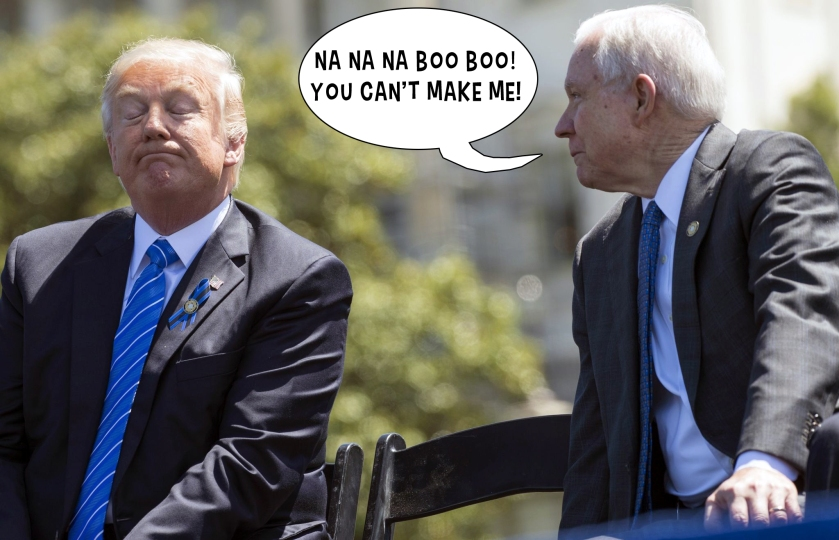 OMFG TRUMP - Sessions taunting