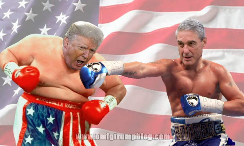 OMFG TRUMP - Boxing match.jpg