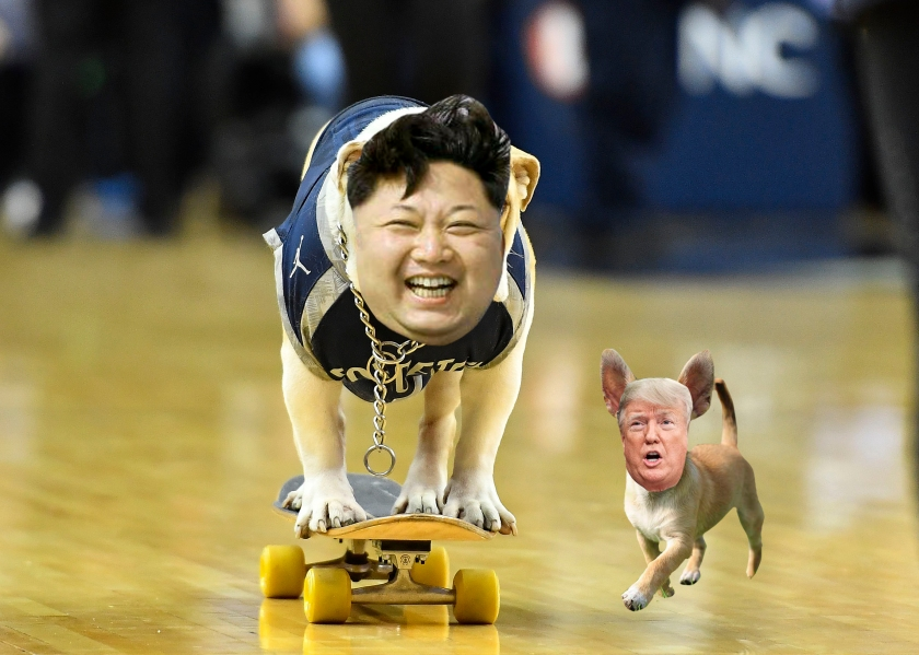 OMFG TRUMP - Kim jong trump dogs.jpg