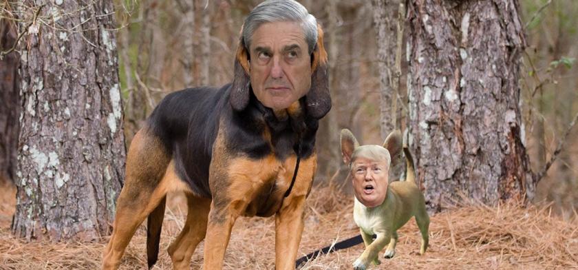 OMFG TRUMP - mueller trump dogs.jpg