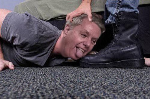 OMFG TRUMP - Lindsey Graham Bootlicker.jpg