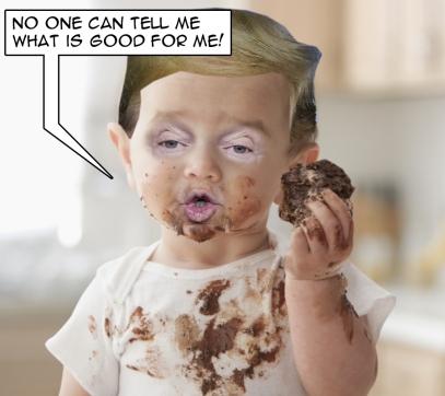 OMFG-TRUMP-baby shit